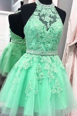 Appliques Halter Natural Waist Princess Sleeveless Tulle Distinctive Homecoming Dress