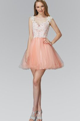 Appliques A-Line Capped Sleeves Tulle Lace Party Dress