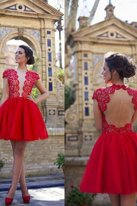 Natural Waist Princess Scoop Short Short Sleeves Homecoming Dress